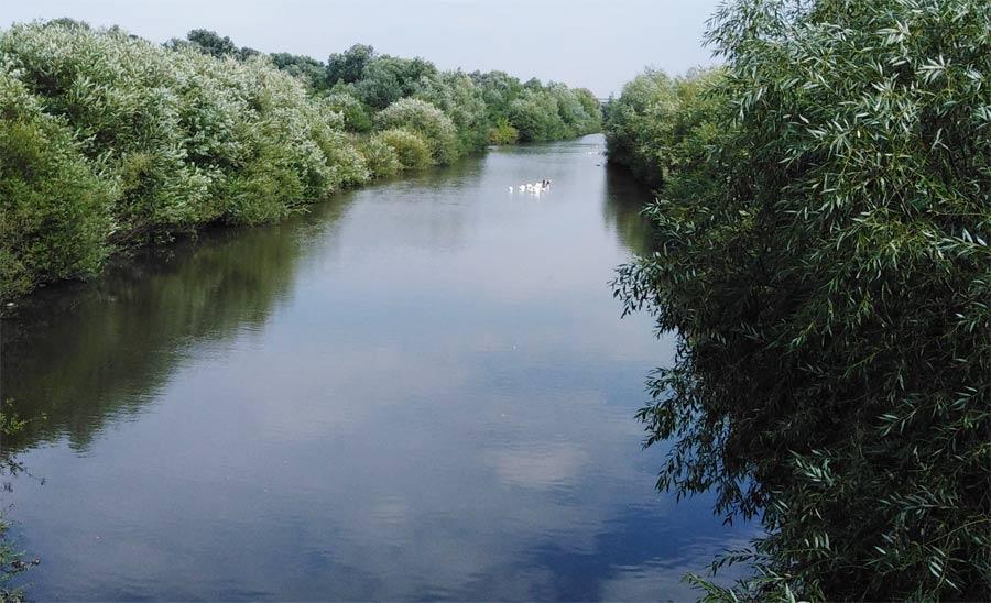 Річка Стрипа між селами Яструбове і Денисів опис вигляд фото розповідь про Яструбово